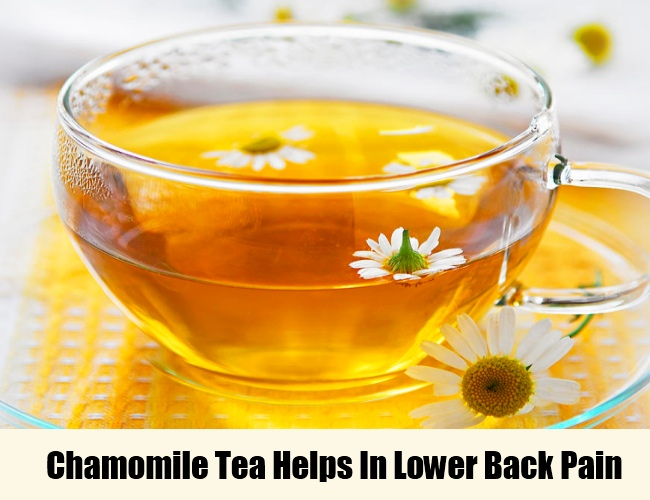 Chamomile Tea Prevents Lower Back Pain
