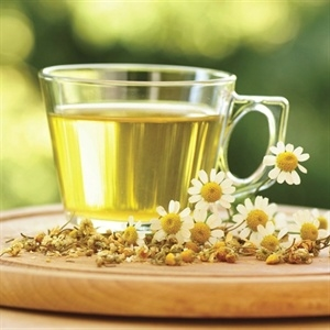 Can You Drink Chamomile Tea When Pregnant
