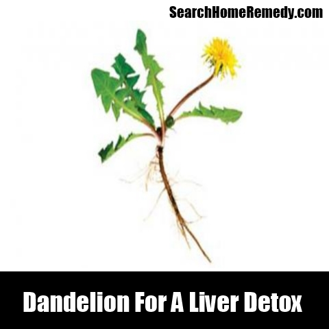 Dandelion For A Liver Detox