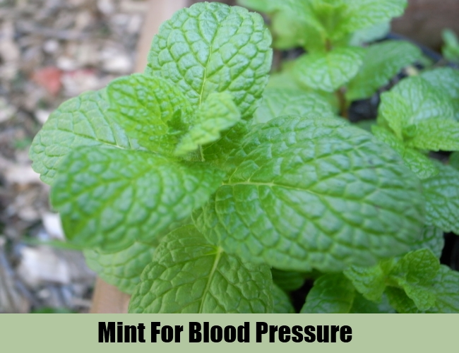 Mint For Blood Pressure