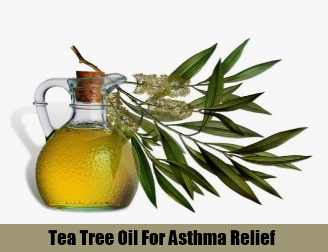Tea Tree Oil For Asthma Relief