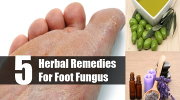 Herbal Remedies For Foot Fungus