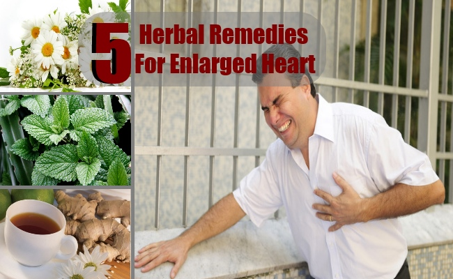 Top 5 Herbal Remedies For Enlarged Heart