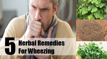 Herbal Remedies For Wheezing