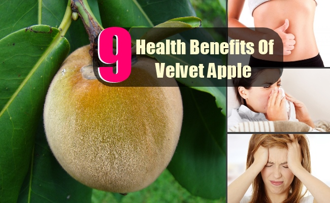 9 Health Benefits Of Velvet Apple